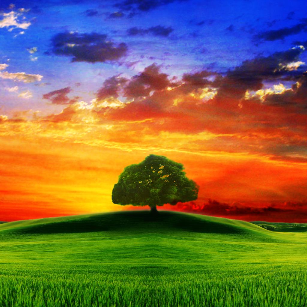 Paesaggi mozzafiato le migliori immagini dal mondo come for Immagini paesaggi hd